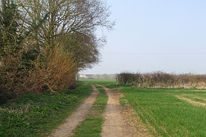 Path in the countryside