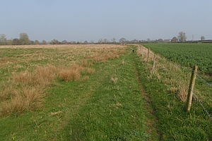 Track used as public path