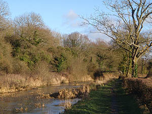 Wilts and Berks Canal at Woottonn Bassett