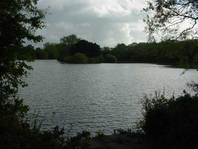 The lake near the station, Westbury
