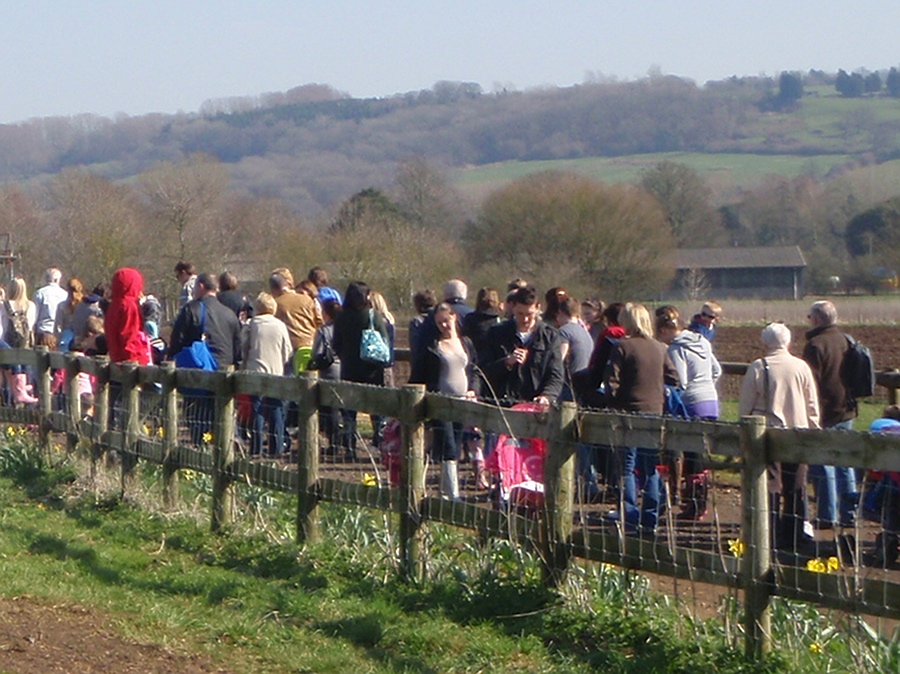 Lackham - queueing for tractor rides