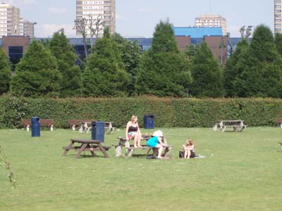 Summer at White City
