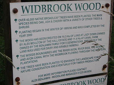 About Widbrook Wood