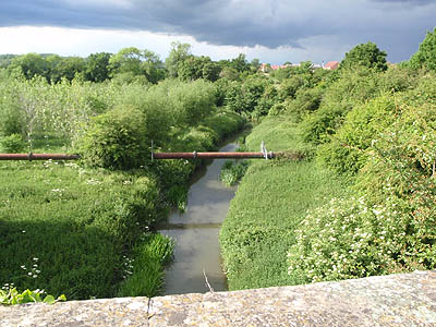 View off the Biss Aquaduct, towards Widbrook Woodland, Trowbridge
