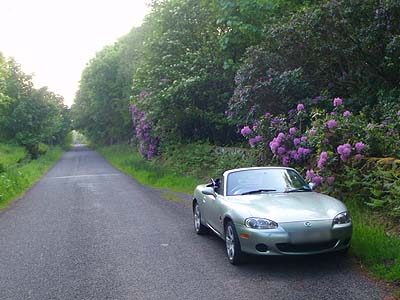 Quiet byroad near Wigtown