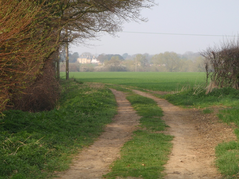 Path across the fields