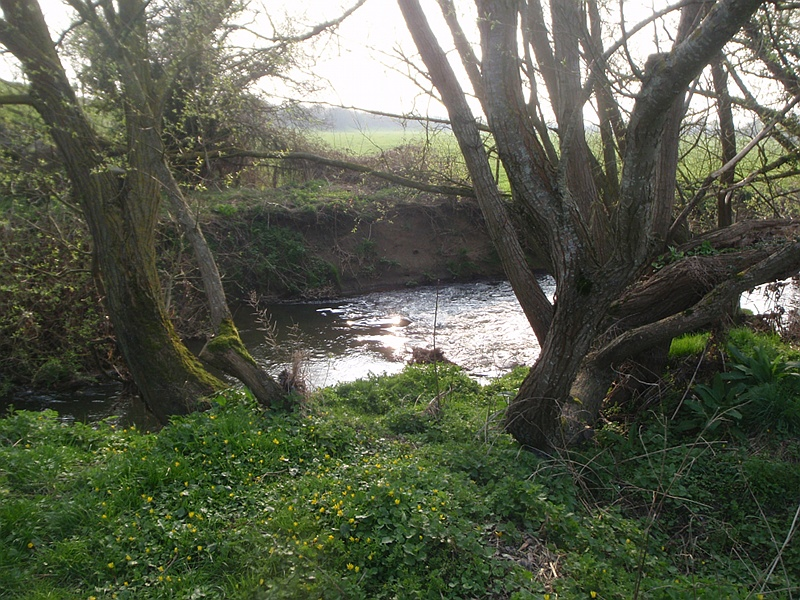 Semington Brook
